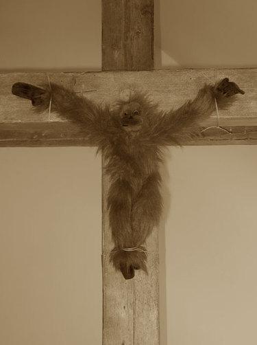 Monkeychristweb